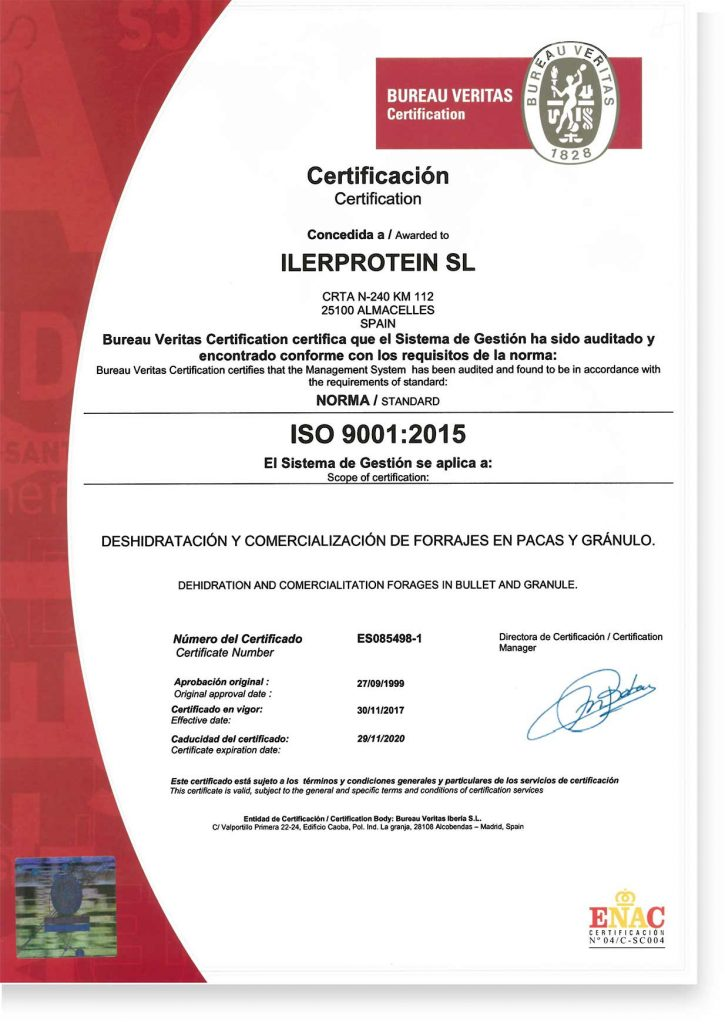 Certificado_ISO. ISO-Certificate. Grupo Venso. Ilerprotein.