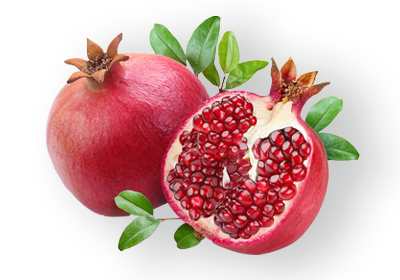 Pomegranate. Grupo Venso. Agroven International.