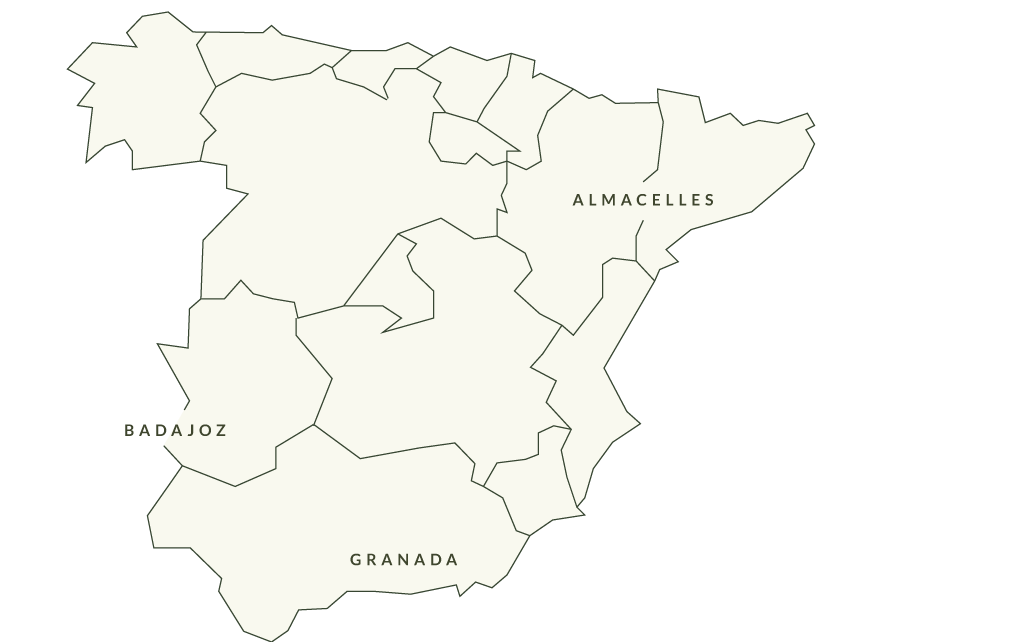 Spain Map. Grupo Venso.