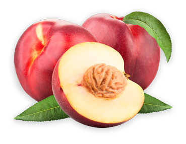 Nectarine. Grupo Venso. Agroven International.